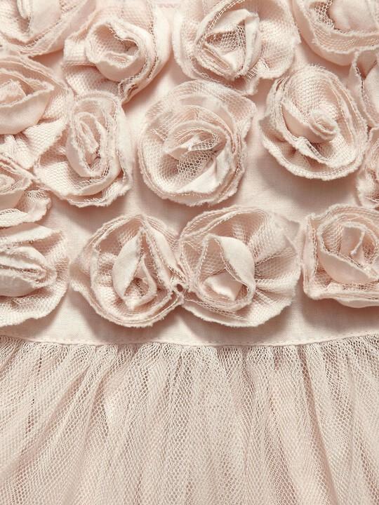 Occasion Rose Mesh Dress image number 3