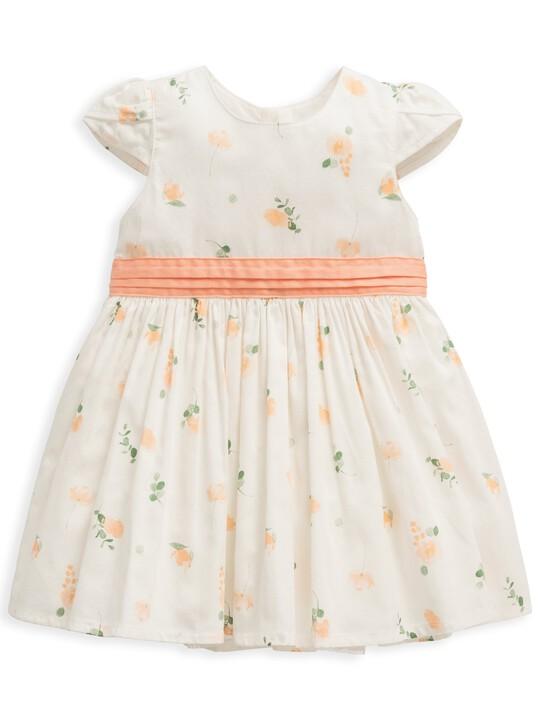 Floral Print Dress image number 1
