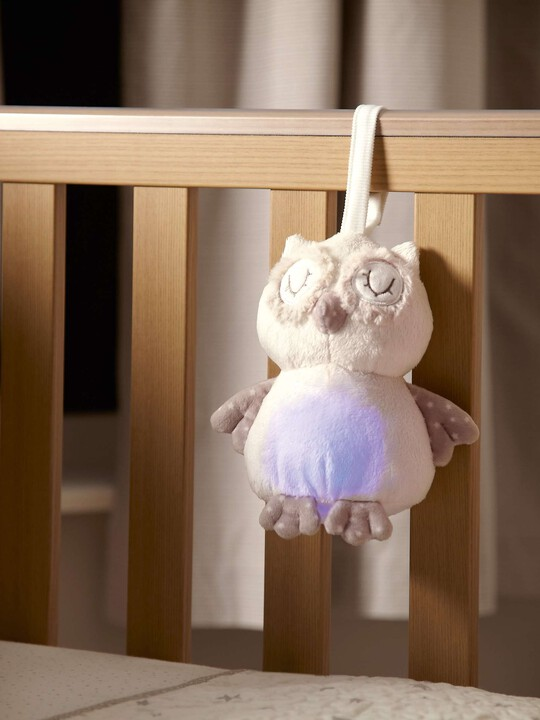 The Sleepy Heads - Owl image number 6
