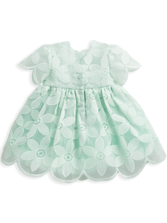 Mint Organza Dress image number 2