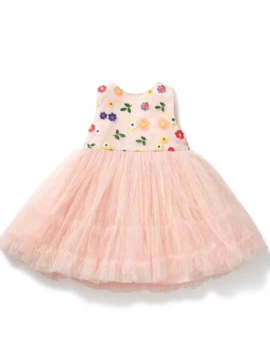 Embroidered Tutu Dress image number 1