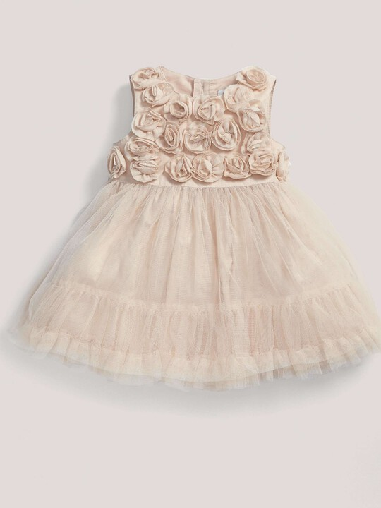 Occasion Rose Mesh Dress image number 1