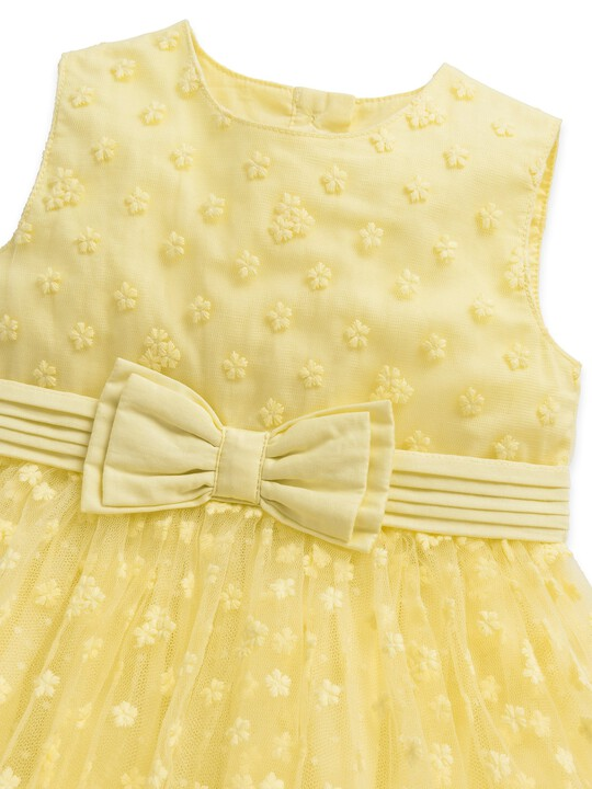 Embroidered Floral Dress image number 4